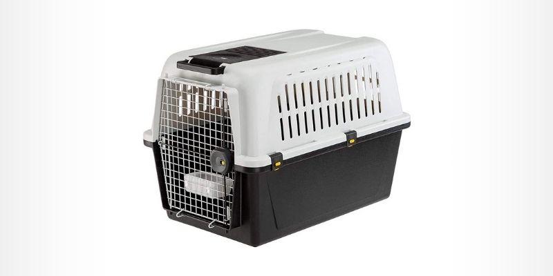melhores caixas transportes para cães